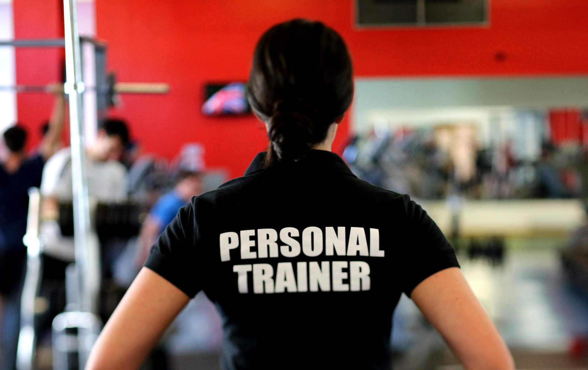 5 best t shirts for personal trainers personal trainer land 1betcityfo Image collections